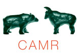 CAMR: Institutional investors and climate risk