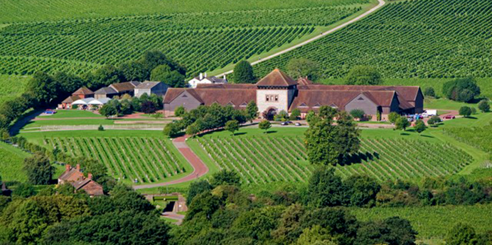 The Great English Winery Tour